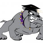 Bulldog with Cap